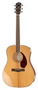 Fender PM1 Standard Paramount Dreadnought Natur